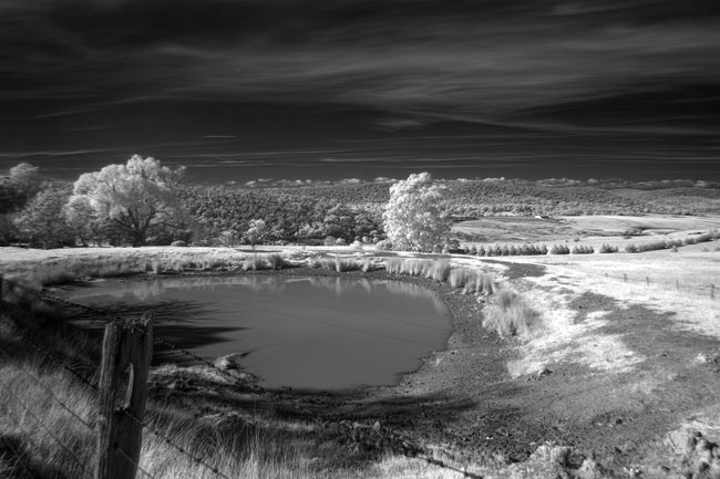 Infrared photography with the Canon 450D or Rebel XSi