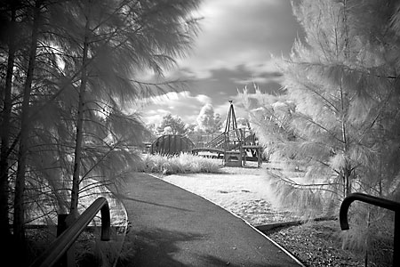 Canon 5D Camera Infrared Performance Test