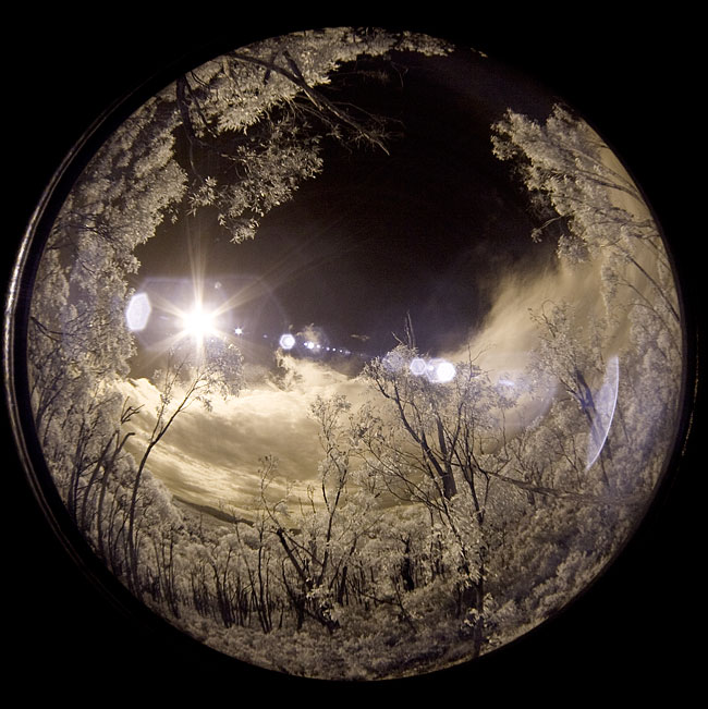 Infrared fisheye images