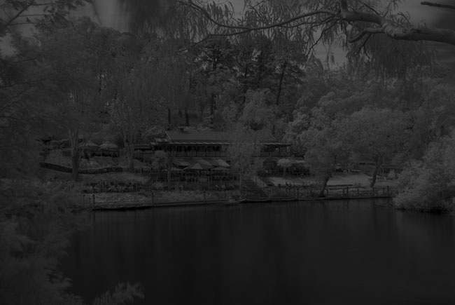 Nikon D40x dSLR infrared photography test