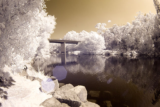 Infrared photography with the Sigma 10mm fisheye lens