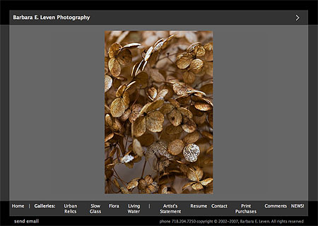 Barbara Leven's photography website