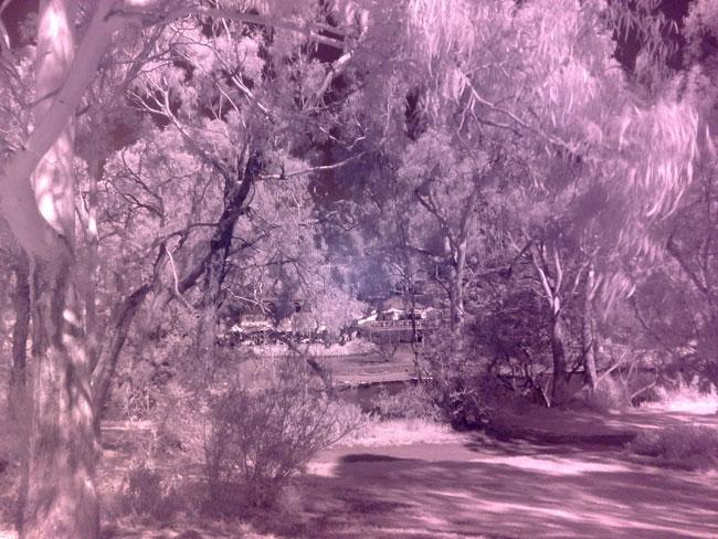 Nokia 6220 infrared photography