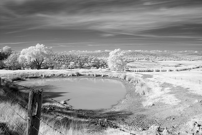 Canon 450D Infrared Photography Camera Test