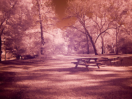 FujiFilm S9500 Infrared Photography Test