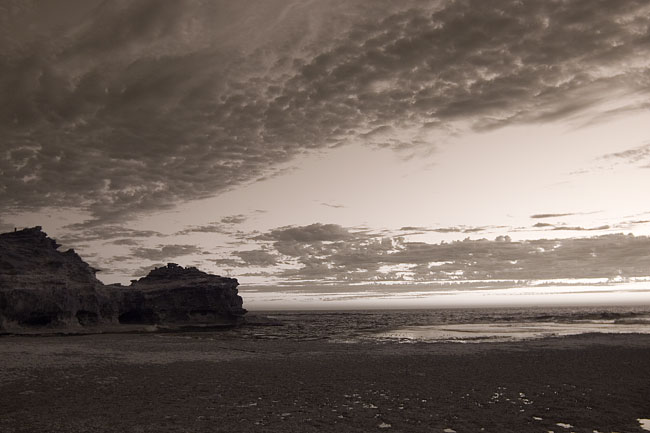 Night infrared photography by Wayne J. Cosshall