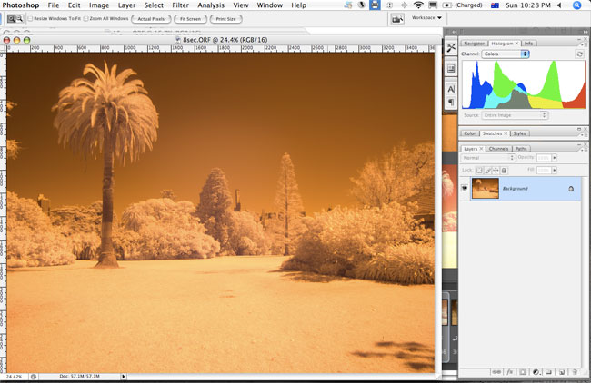 Olympus E-3 digital camera infrared photography review