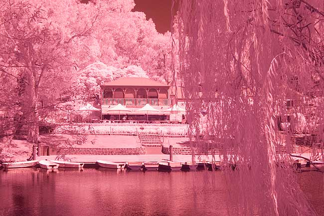 White Balance for digital infrared photography