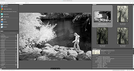 Adobe Photoshop CS3 Beta Bridge