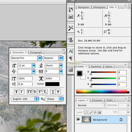 Adobe Photoshop CS3 Beta Review